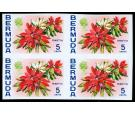 SG253var. 1970 5c Poinsettia. 'IMPERFORATE'. Brilliant U/M...